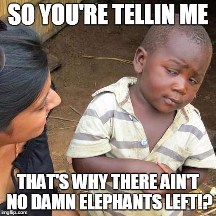 Third World Skeptical Kid Meme | SO YOU'RE TELLIN ME THAT'S WHY THERE AIN'T NO DAMN ELEPHANTS LEFT!? | image tagged in memes,third world skeptical kid | made w/ Imgflip meme maker