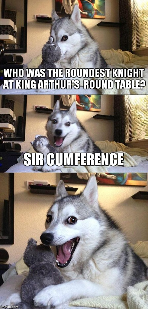 Bad Pun Dog | WHO WAS THE ROUNDEST KNIGHT AT KING ARTHUR'S  ROUND TABLE? SIR CUMFERENCE | image tagged in memes,bad pun dog | made w/ Imgflip meme maker