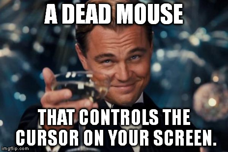 Leonardo Dicaprio Cheers Meme | A DEAD MOUSE THAT CONTROLS THE CURSOR ON YOUR SCREEN. | image tagged in memes,leonardo dicaprio cheers | made w/ Imgflip meme maker
