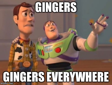 X, X Everywhere Meme | GINGERS GINGERS EVERYWHERE | image tagged in memes,x, x everywhere,x x everywhere | made w/ Imgflip meme maker