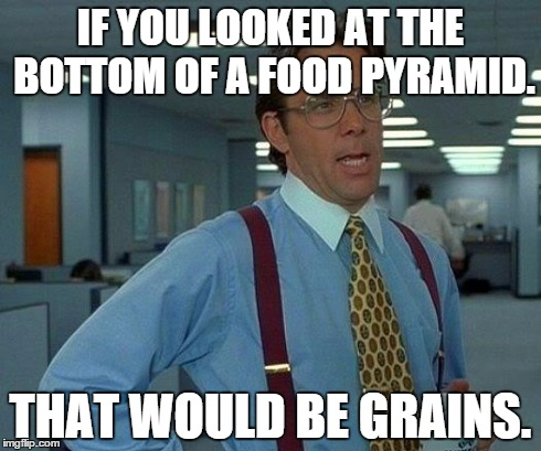 That Would Be Great Meme | IF YOU LOOKED AT THE BOTTOM OF A FOOD PYRAMID. THAT WOULD BE GRAINS. | image tagged in memes,that would be great | made w/ Imgflip meme maker