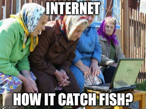 Babushkas On Facebook Meme | INTERNET HOW IT CATCH FISH? | image tagged in memes,babushkas on facebook | made w/ Imgflip meme maker