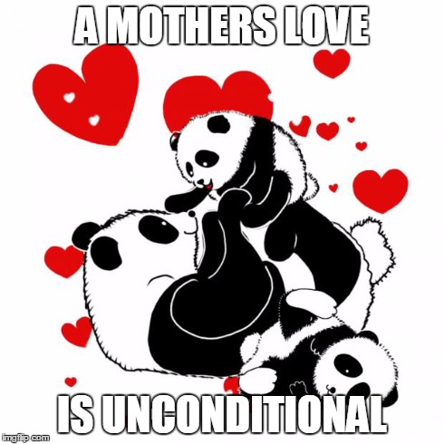 A Mothers Love meme- Pandas | A MOTHERS LOVE IS UNCONDITIONAL | image tagged in pandas,babies,kids,mothers love,mothers day,moms | made w/ Imgflip meme maker