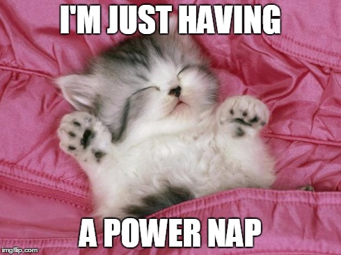 Cute Kitten Power nap | I'M JUST HAVING A POWER NAP | image tagged in kitten sleeping,cat nap,power naps,sleeping cats,cute | made w/ Imgflip meme maker