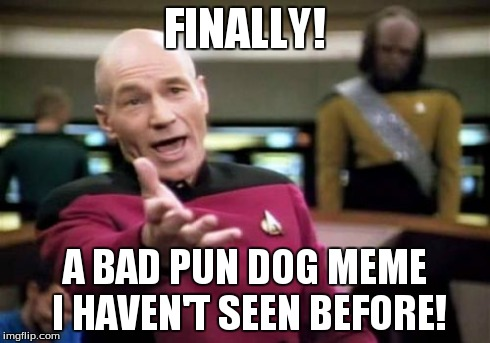 Picard Wtf Meme | FINALLY! A BAD PUN DOG MEME I HAVEN'T SEEN BEFORE! | image tagged in memes,picard wtf | made w/ Imgflip meme maker