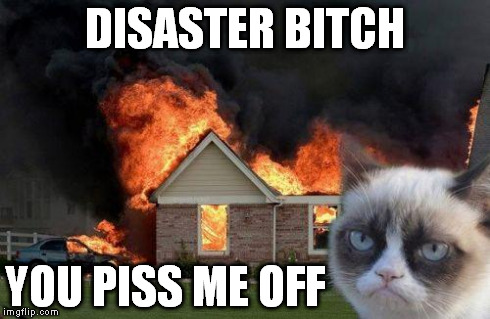Burn Kitty | DISASTER B**CH YOU PISS ME OFF | image tagged in burn kitty | made w/ Imgflip meme maker