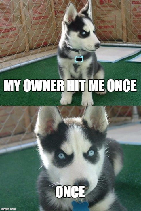 Don't mess with this guy... | MY OWNER HIT ME ONCE ONCE | image tagged in memes,insanity puppy | made w/ Imgflip meme maker