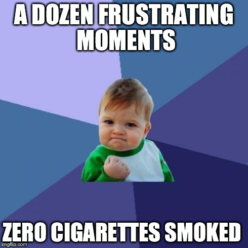 Success Kid Meme | A DOZEN FRUSTRATING MOMENTS ZERO CIGARETTES SMOKED | image tagged in memes,success kid,AdviceAnimals | made w/ Imgflip meme maker