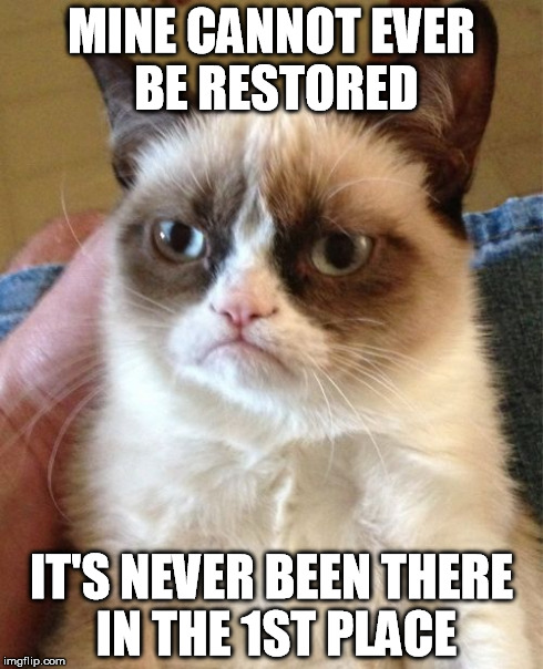 Grumpy Cat Meme | MINE CANNOT EVER BE RESTORED IT'S NEVER BEEN THERE IN THE 1ST PLACE | image tagged in memes,grumpy cat | made w/ Imgflip meme maker