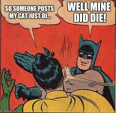 Batman Slapping Robin Meme | SO SOMEONE POSTS MY CAT JUST DI... WELL MINE DID DIE! | image tagged in memes,batman slapping robin | made w/ Imgflip meme maker