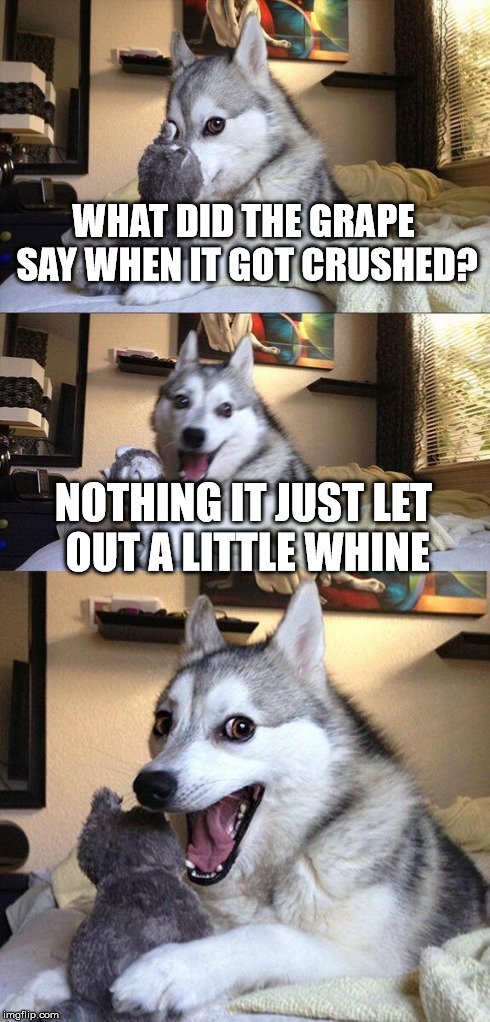 Bad Pun Dog Meme | WHAT DID THE GRAPE SAY WHEN IT GOT CRUSHED? NOTHING IT JUST LET OUT A LITTLE WHINE | image tagged in memes,bad pun dog | made w/ Imgflip meme maker