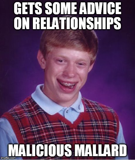 Bad Luck Brian | GETS SOME ADVICE ON RELATIONSHIPS MALICIOUS MALLARD | image tagged in memes,bad luck brian | made w/ Imgflip meme maker
