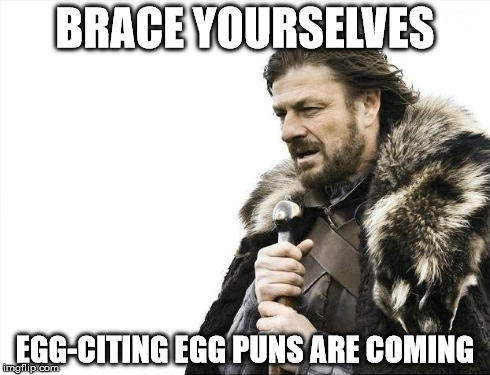 Brace Yourselves X is Coming Meme | BRACE YOURSELVES EGG-CITING EGG PUNS ARE COMING | image tagged in memes,brace yourselves x is coming | made w/ Imgflip meme maker