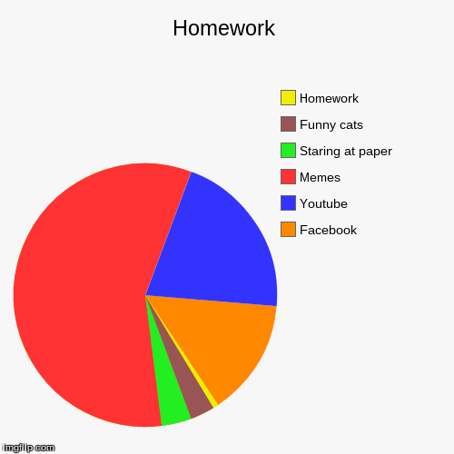 pie charts homework sheet