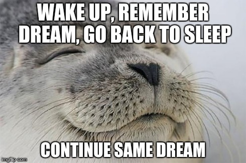 Satisfied Seal Meme | WAKE UP, REMEMBER DREAM, GO BACK TO SLEEP CONTINUE SAME DREAM | image tagged in memes,satisfied seal,AdviceAnimals | made w/ Imgflip meme maker