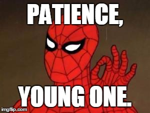 User Template Spiderman | PATIENCE, YOUNG ONE. | image tagged in user template spiderman | made w/ Imgflip meme maker
