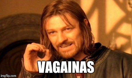One Does Not Simply Meme | VAGAINAS | image tagged in memes,one does not simply | made w/ Imgflip meme maker