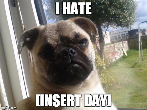 Grumpy Dog | I HATE [INSERT DAY] | image tagged in grumpy dog | made w/ Imgflip meme maker