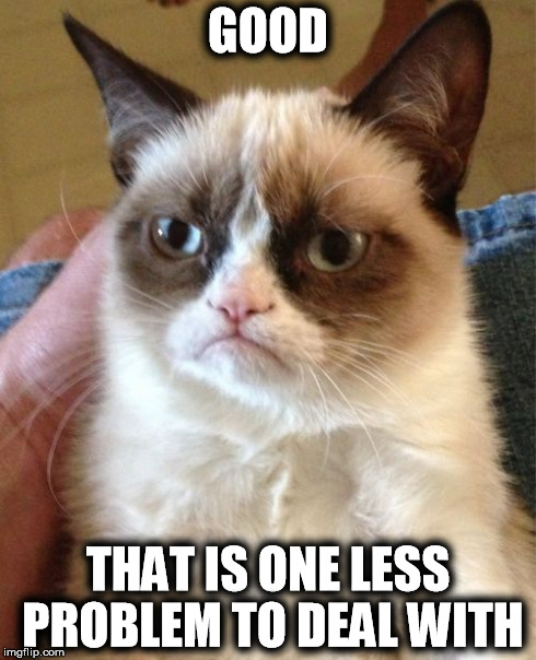 Grumpy Cat Meme | GOOD THAT IS ONE LESS PROBLEM TO DEAL WITH | image tagged in memes,grumpy cat | made w/ Imgflip meme maker