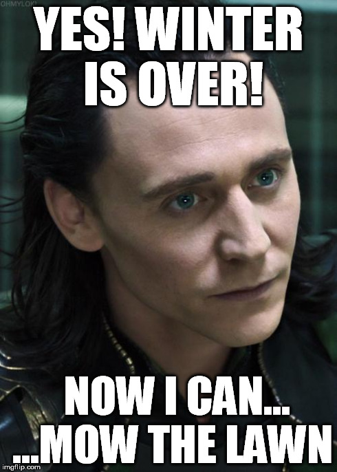 Nice Guy Loki | YES! WINTER IS OVER! NOW I CAN... ...MOW THE LAWN | image tagged in memes,nice guy loki | made w/ Imgflip meme maker