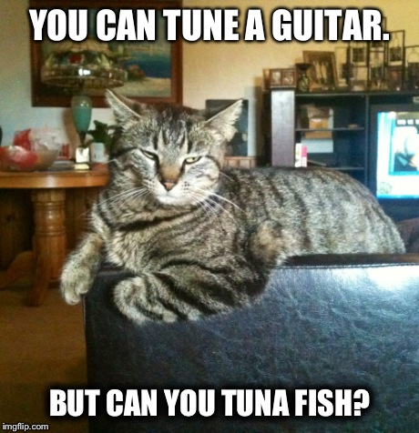 Cool cat imgflip for Is tuna fish good for cats