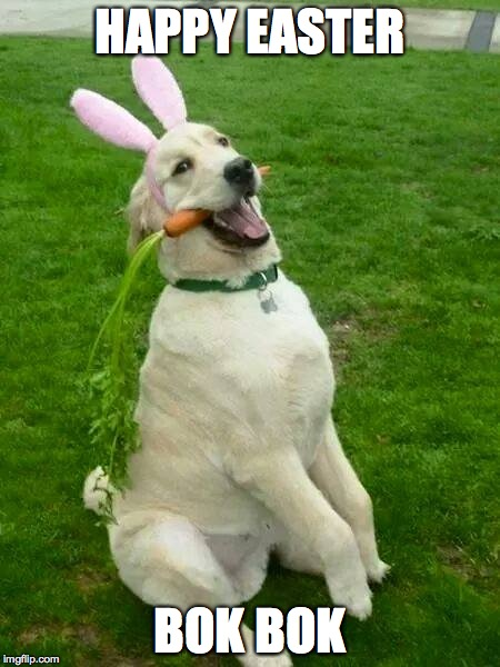 Happy Easter  | HAPPY EASTER BOK BOK | image tagged in easter,dog | made w/ Imgflip meme maker