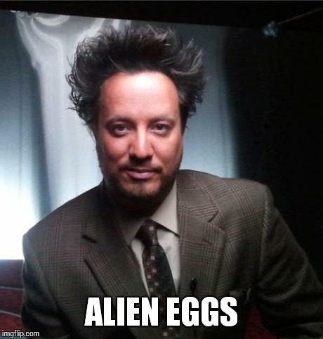 ancient aliens | ALIEN EGGS | image tagged in ancient aliens | made w/ Imgflip meme maker