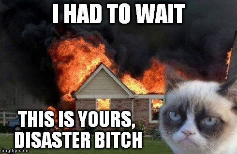 Burn Kitty | I HAD TO WAIT THIS IS YOURS, DISASTER B**CH | image tagged in burn kitty | made w/ Imgflip meme maker