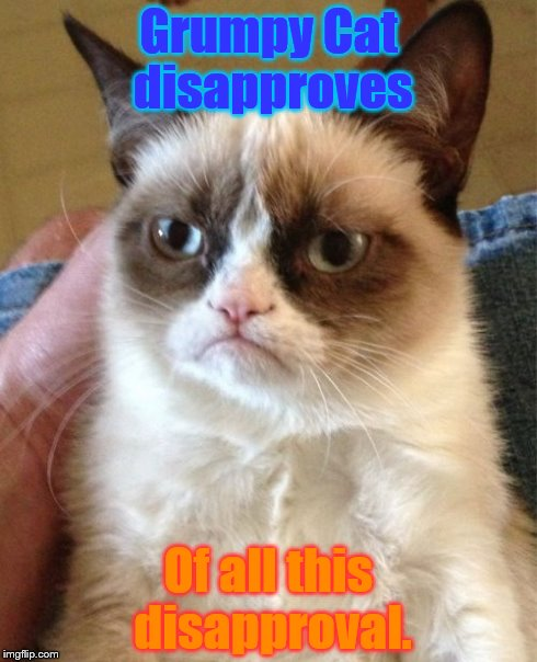 Disapproception | Grumpy Cat disapproves Of all this disapproval. | image tagged in memes,grumpy cat | made w/ Imgflip meme maker