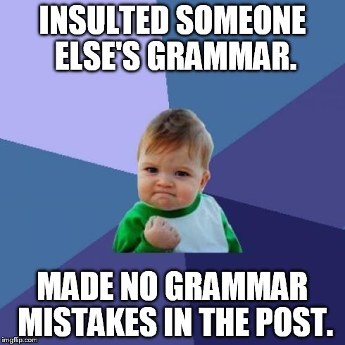Success Kid Meme | INSULTED SOMEONE ELSE'S GRAMMAR. MADE NO GRAMMAR MISTAKES IN THE POST. | image tagged in memes,success kid | made w/ Imgflip meme maker