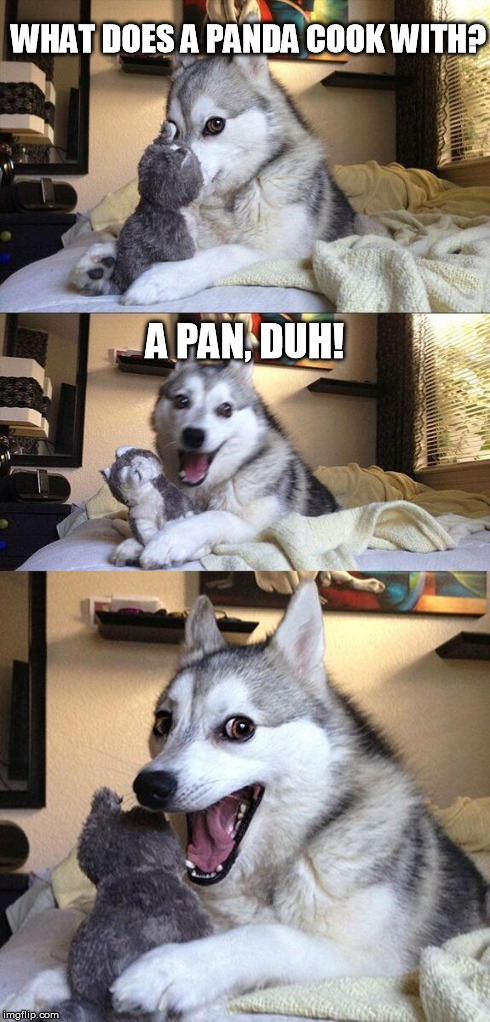 Bad Pun Dog Meme | WHAT DOES A PANDA COOK WITH? A PAN, DUH! | image tagged in memes,bad pun dog,jokes | made w/ Imgflip meme maker
