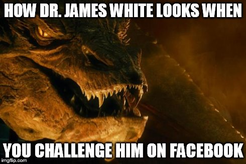 Smaug | HOW DR. JAMES WHITE LOOKS WHEN YOU CHALLENGE HIM ON FACEBOOK | image tagged in smaug,religion,james white | made w/ Imgflip meme maker