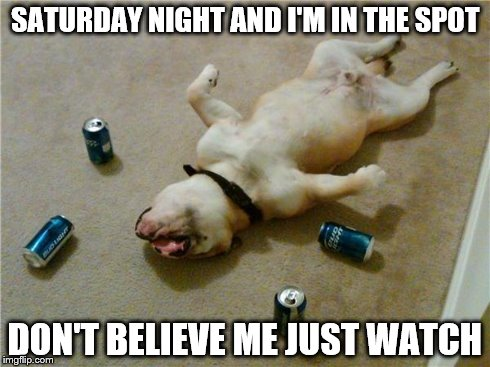 drunk dog | SATURDAY NIGHT AND I'M IN THE SPOT DON'T BELIEVE ME JUST WATCH | image tagged in drunk dog | made w/ Imgflip meme maker