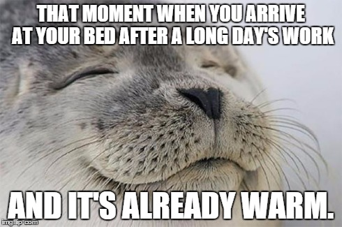 Satisfied Seal Meme | THAT MOMENT WHEN YOU ARRIVE AT YOUR BED AFTER A LONG DAY'S WORK AND IT'S ALREADY WARM. | image tagged in memes,satisfied seal | made w/ Imgflip meme maker