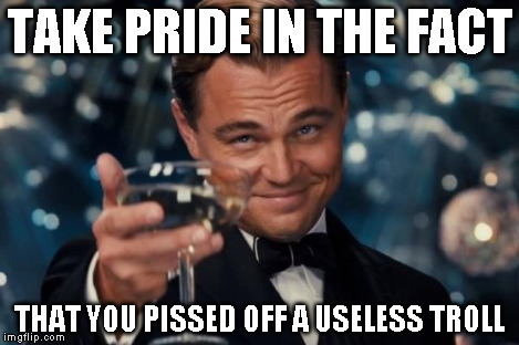 Leonardo Dicaprio Cheers Meme | TAKE PRIDE IN THE FACT THAT YOU PISSED OFF A USELESS TROLL | image tagged in memes,leonardo dicaprio cheers | made w/ Imgflip meme maker
