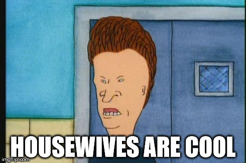 Butthead Beavis Paycoin Idiots | HOUSEWIVES ARE COOL | image tagged in butthead beavis paycoin idiots,beavis and butthead | made w/ Imgflip meme maker