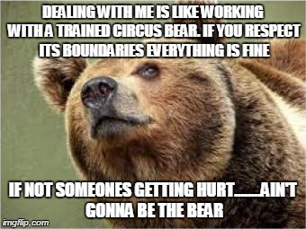 Smug Bear | DEALING WITH ME IS LIKE WORKING WITH A TRAINED CIRCUS BEAR. IF YOU RESPECT ITS BOUNDARIES EVERYTHING IS FINE IF NOT SOMEONES GETTING HURT... | image tagged in memes,smug bear | made w/ Imgflip meme maker