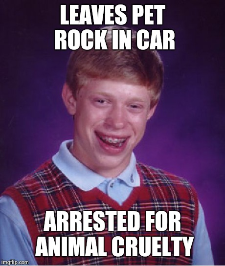 Bad Luck Brian Meme | LEAVES PET ROCK IN CAR ARRESTED FOR ANIMAL CRUELTY | image tagged in memes,bad luck brian | made w/ Imgflip meme maker
