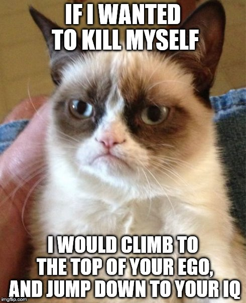 Grumpy Cat Meme | IF I WANTED TO KILL MYSELF I WOULD CLIMB TO THE TOP OF YOUR EGO, AND JUMP DOWN TO YOUR IQ | image tagged in memes,grumpy cat | made w/ Imgflip meme maker