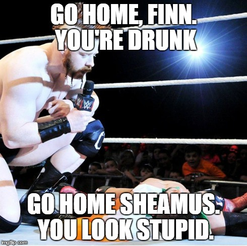 the meeting of the irish | GO HOME, FINN. YOU'RE DRUNK GO HOME SHEAMUS. YOU LOOK STUPID. | image tagged in finn balor,sheamus,wwe,funny,meme | made w/ Imgflip meme maker