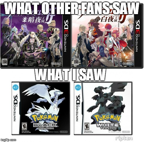 Two Versions of Fire Emblem | WHAT OTHER FANS SAW WHAT I SAW | image tagged in fire emblem,pokemon | made w/ Imgflip meme maker