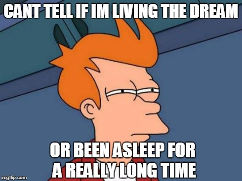 Futurama Fry Meme | CANT TELL IF IM LIVING THE DREAM OR BEEN ASLEEP FOR A REALLY LONG TIME | image tagged in memes,futurama fry | made w/ Imgflip meme maker