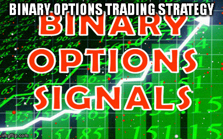 Indian binary options meme