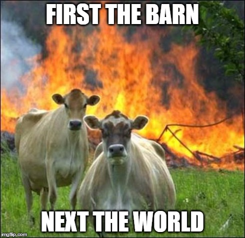 Evil Cows Meme | FIRST THE BARN NEXT THE WORLD | image tagged in memes,evil cows | made w/ Imgflip meme maker