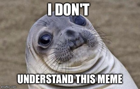 Awkward Moment Sealion Meme | I DON'T UNDERSTAND THIS MEME | image tagged in memes,awkward moment sealion | made w/ Imgflip meme maker