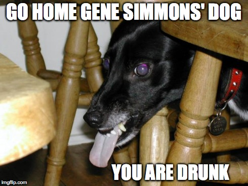 GO HOME GENE SIMMONS' DOG YOU ARE DRUNK | image tagged in growly dog | made w/ Imgflip meme maker