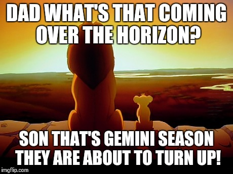 Lion King Meme | DAD WHAT'S THAT COMING OVER THE HORIZON? SON THAT'S GEMINI SEASON THEY ARE ABOUT TO TURN UP! | image tagged in memes,lion king | made w/ Imgflip meme maker