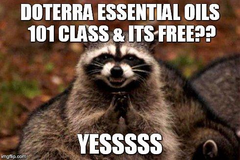 k577x evil plotting raccoon meme imgflip,Doterra Meme