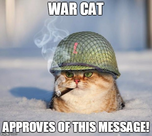 War Cat | WAR CAT APPROVES OF THIS MESSAGE! | image tagged in war cat,approves | made w/ Imgflip meme maker