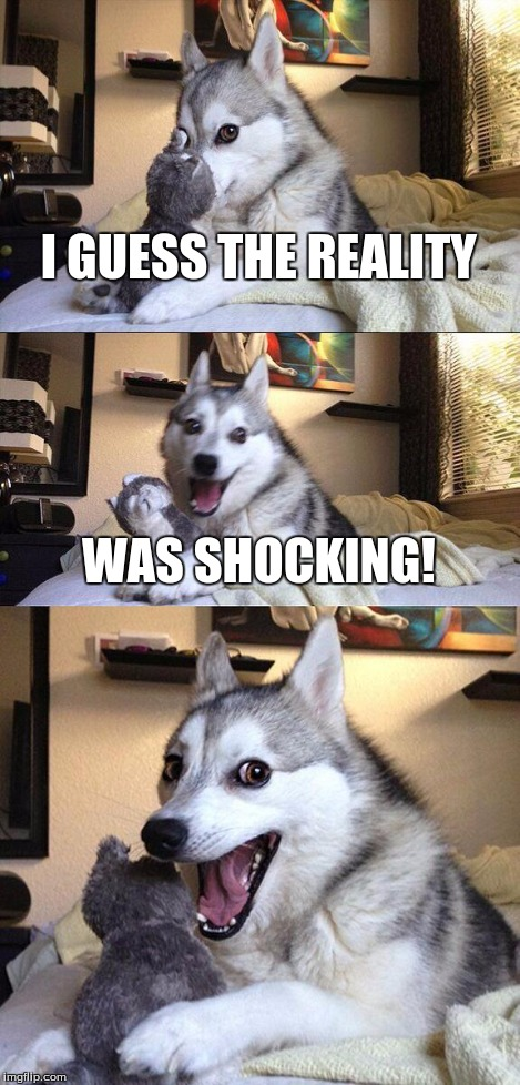 Bad Pun Dog Meme | I GUESS THE REALITY WAS SHOCKING! | image tagged in memes,bad pun dog | made w/ Imgflip meme maker